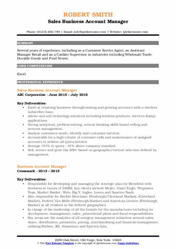 Sales Business Account Manager Resume Template