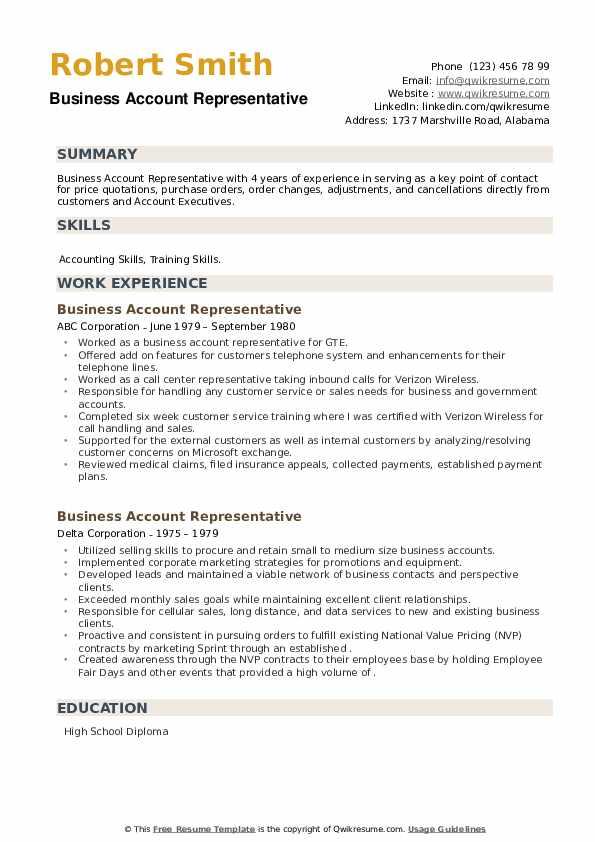 Business Account Representative Resume example