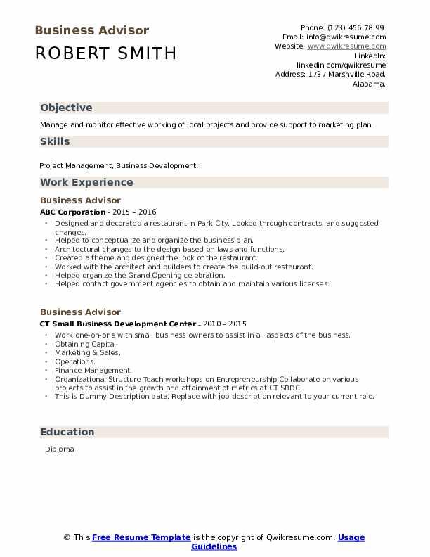 Business Advisor Resume example