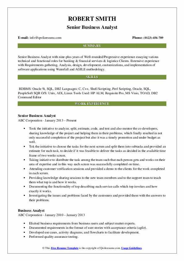 Senior Business Analyst Resume Format