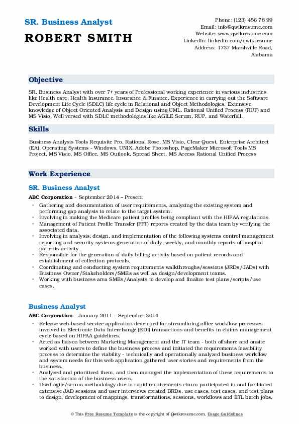 Business Analyst Resume example