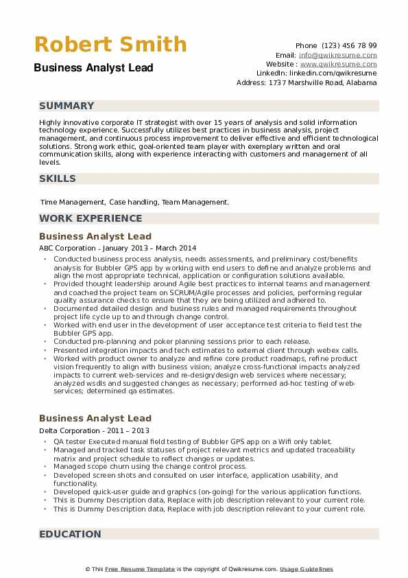 Business Analyst Lead Resume example