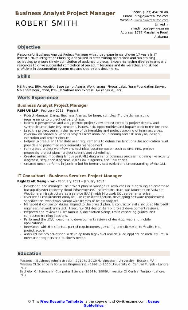Business Analyst Project Manager Resume Template
