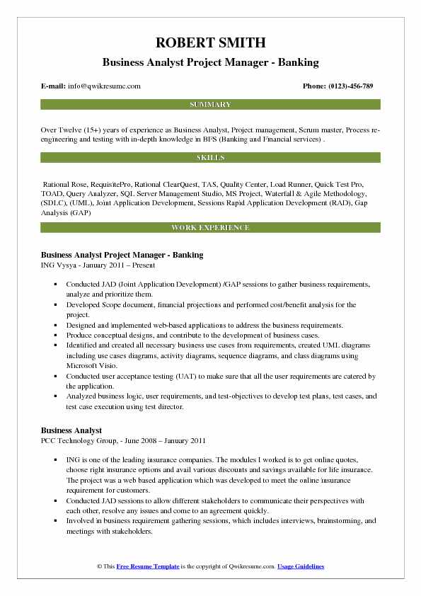 Business Analyst Project Manager - Banking Resume Template