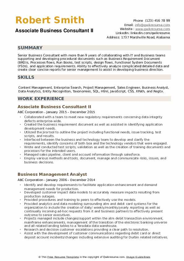 Business Consultant Resume example