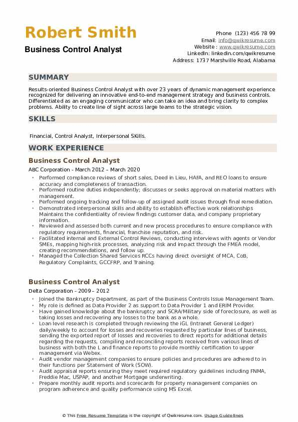 Business Control Analyst Resume example