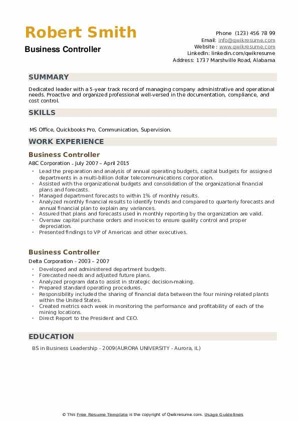 Business Controller Resume example
