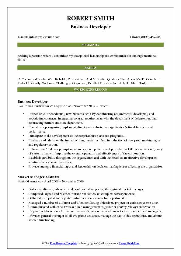 Business Developer Resume Sample