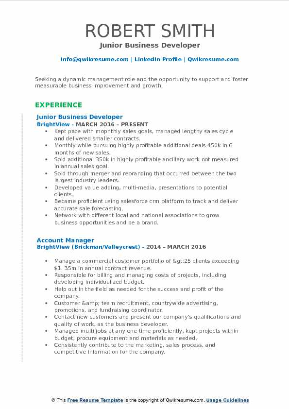 Junior Business Developer Resume Template