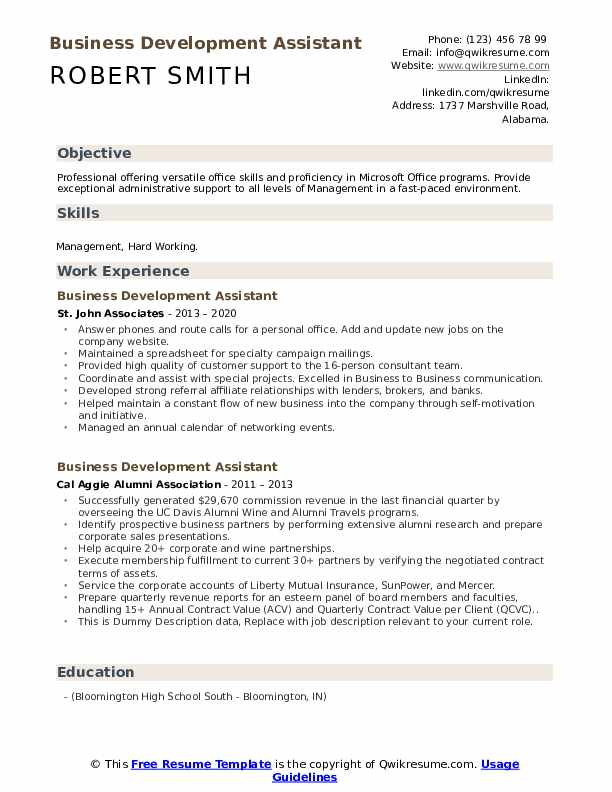 Business Development Assistant Resume example