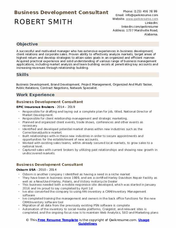 Business Development Consultant Resume example