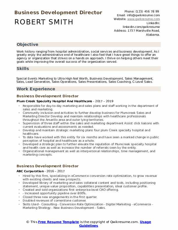 Business Development Director Resume Model