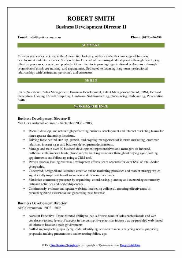 Business Development Director II Resume Format