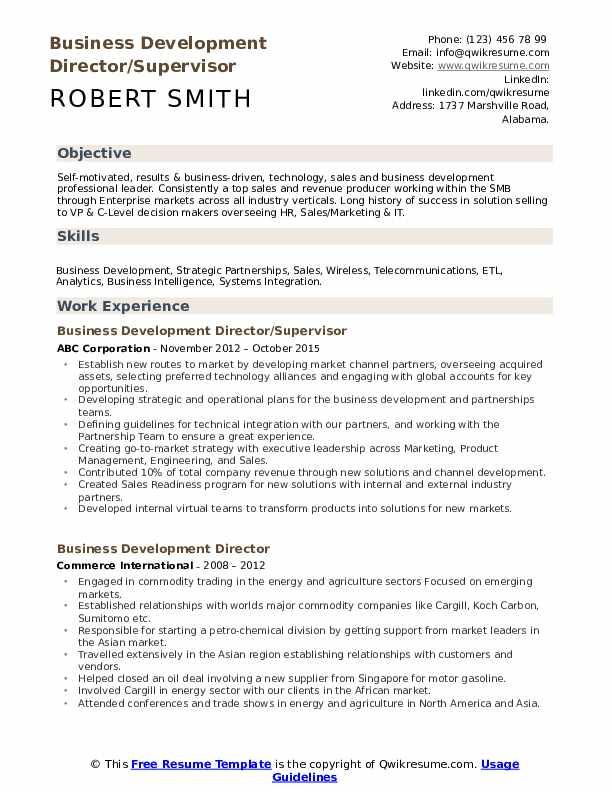 Business Development Director/Supervisor Resume Format