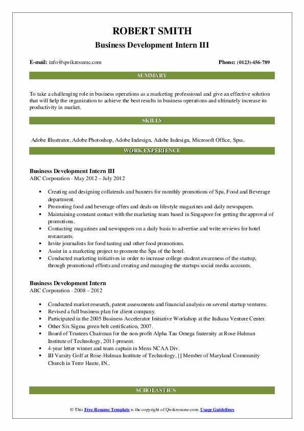 Business Development Intern III Resume Sample