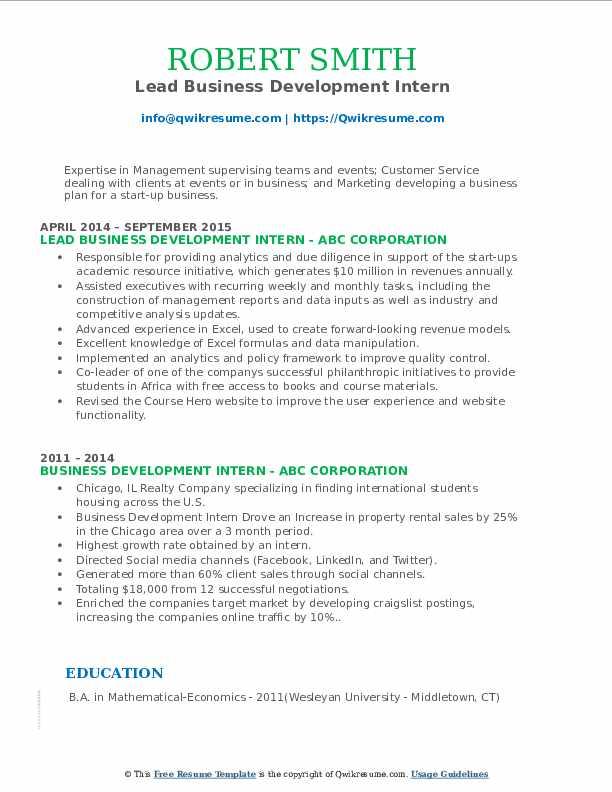Lead Business Development Intern Resume Format