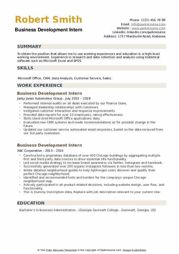 Business Development Intern Resume example