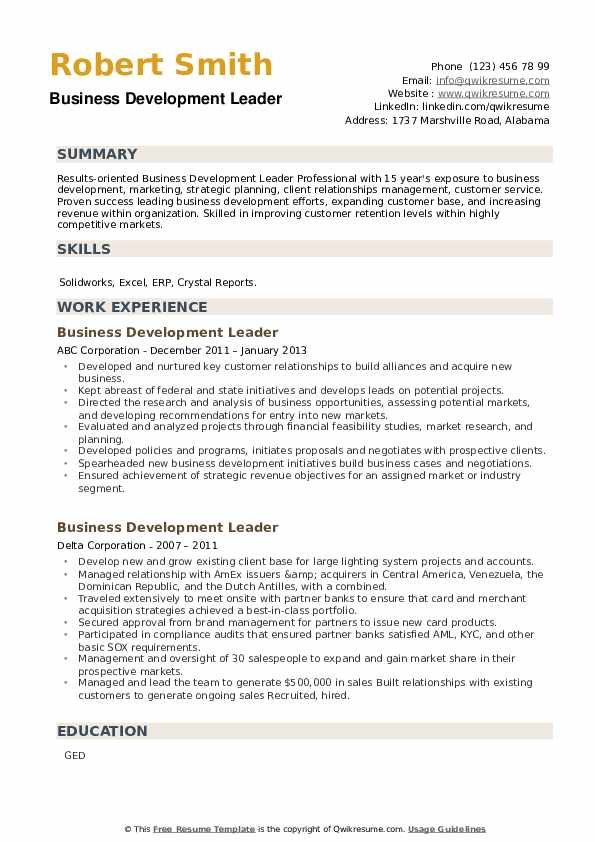Business Development Leader Resume example