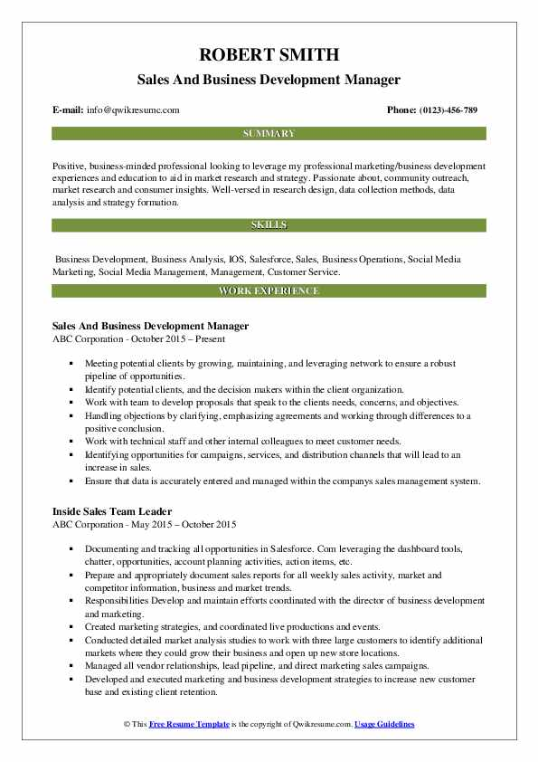 Sales And Business Development Manager Resume Template