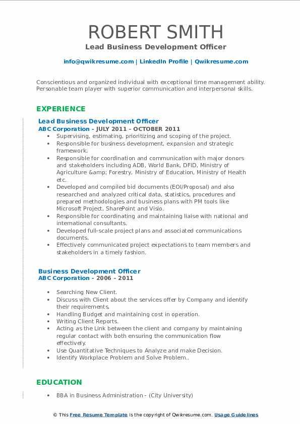 Lead Business Development Officer Resume Template