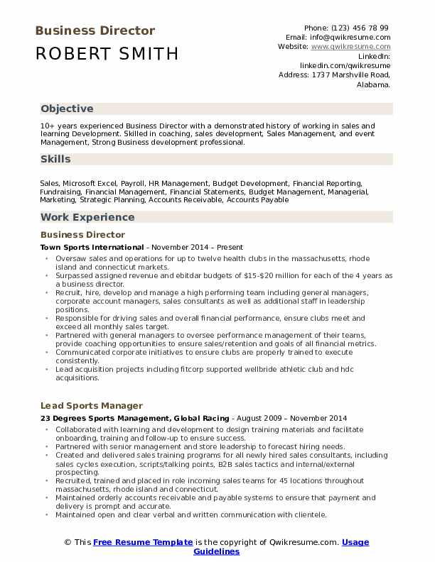 Business Director Resume Model