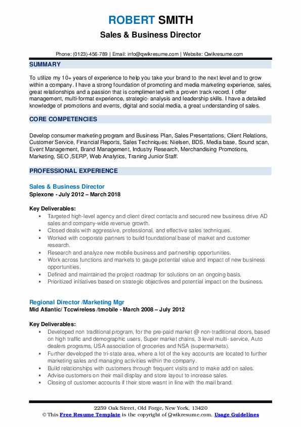Sales & Business Director Resume Model