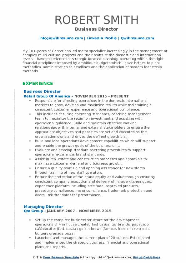 Business Director Resume Example