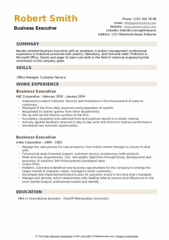 Business Executive Resume example