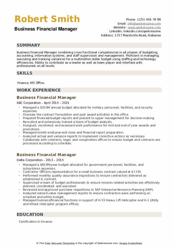 Business Financial Manager Resume example