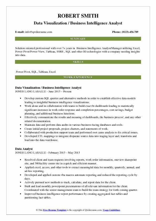 Data Visualization / Business Intelligence Analyst Resume Example