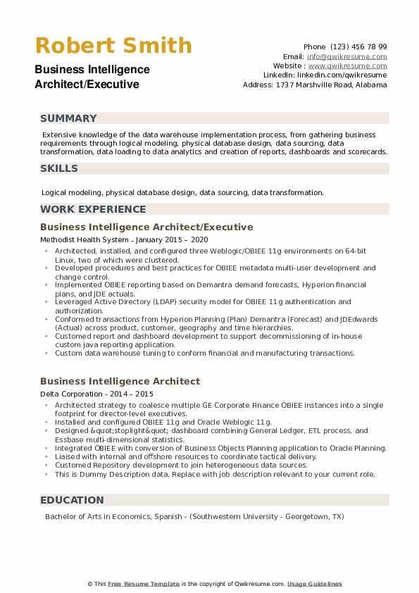 Business Intelligence Architect Resume example