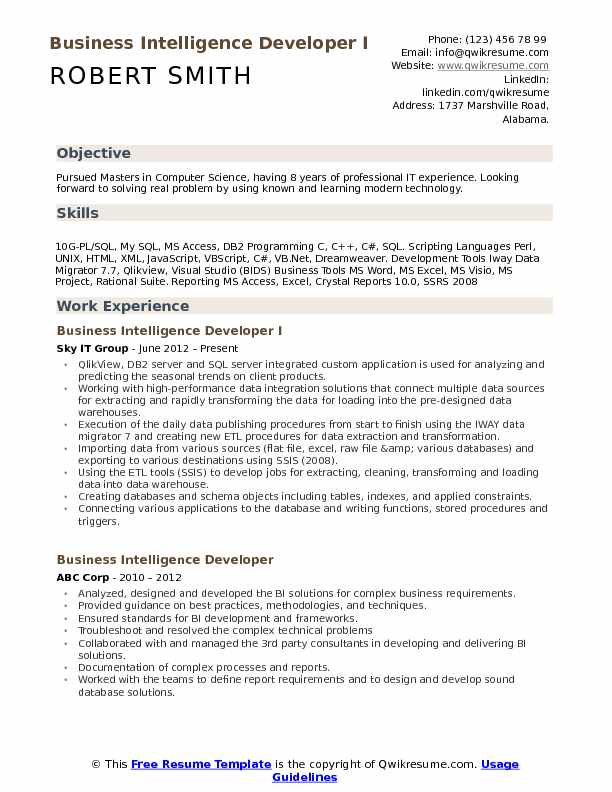 Business Intelligence Developer I Resume Model