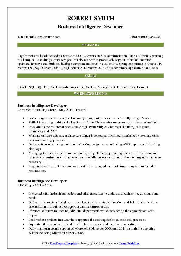 Business Intelligence Developer Resume Sample