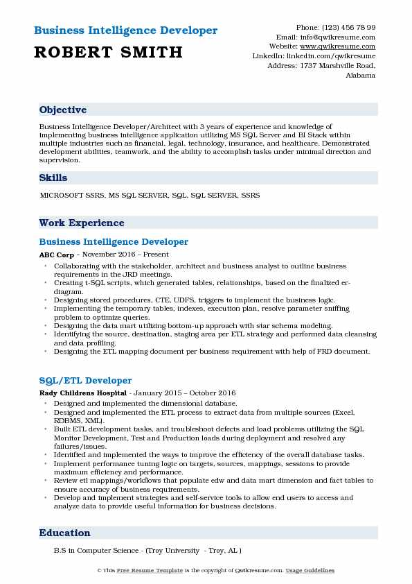 Business Intelligence Developer Resume Model