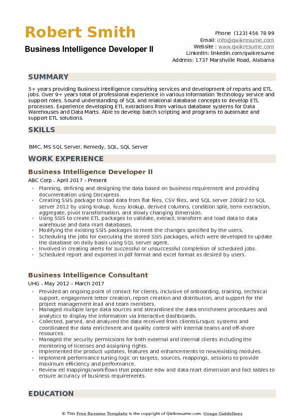 Business Intelligence Developer II Resume Format
