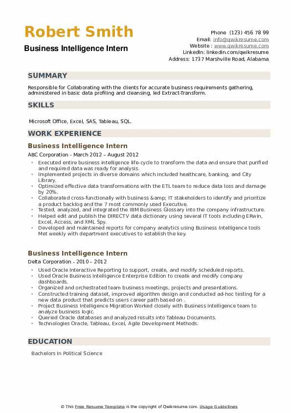 Business Intelligence Intern Resume example