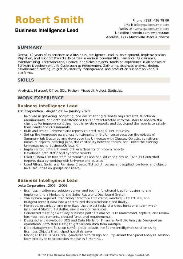 Business Intelligence Lead Resume example