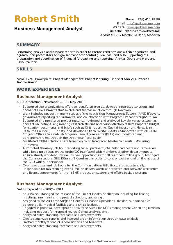 Business Management Analyst Resume example