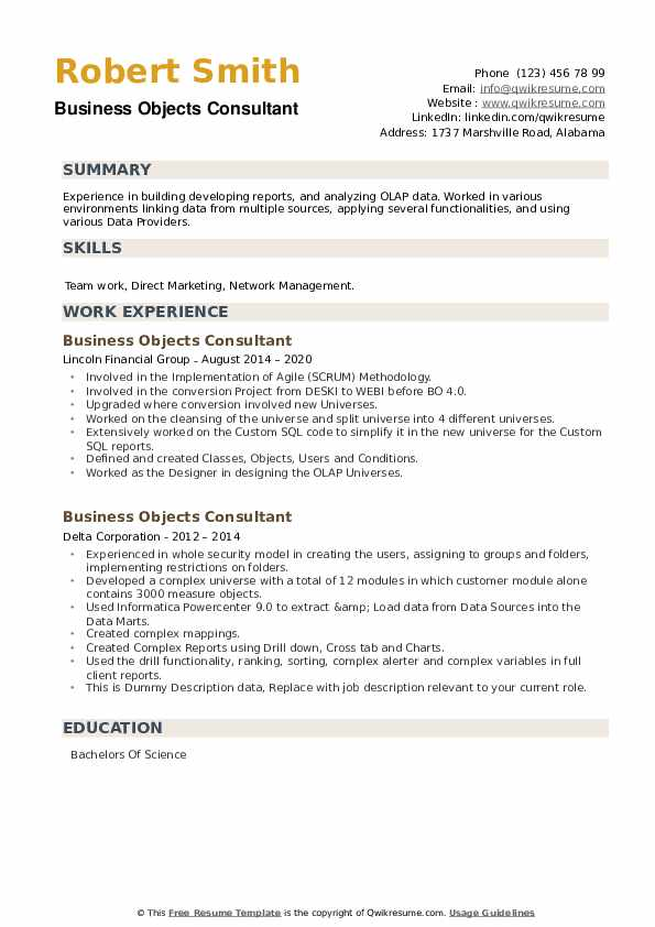 Business Objects Consultant Resume example