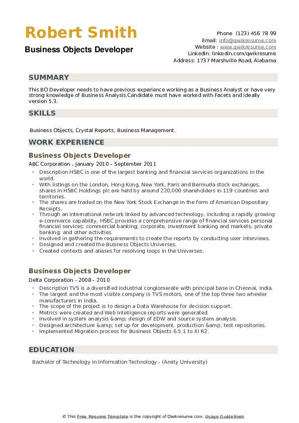 Business Objects Developer Resume example