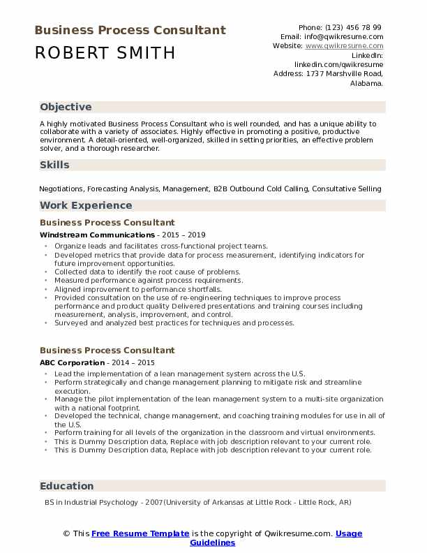 Business Process Consultant Resume example