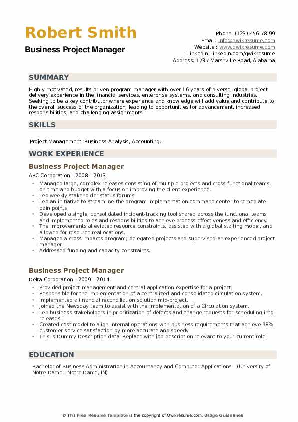 Business Project Manager Resume example