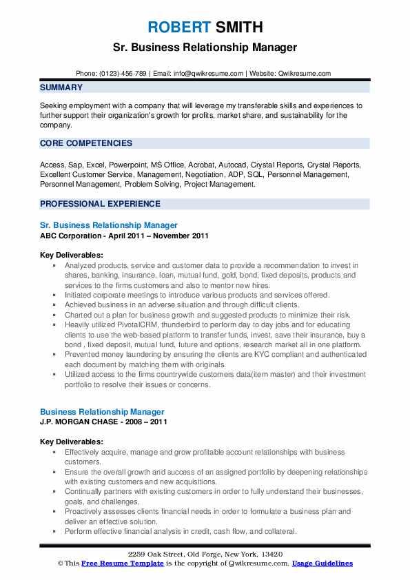 Sr. Business Relationship Manager Resume Model