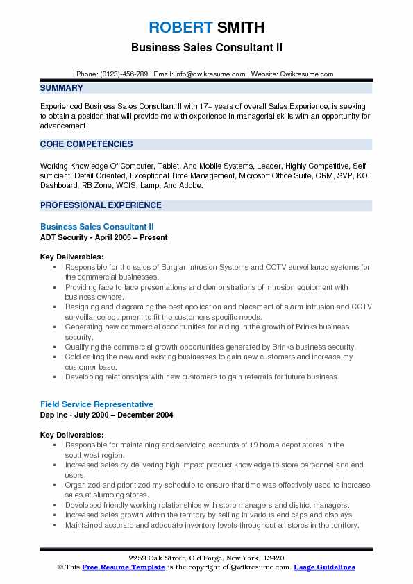 Business Sales Consultant II Resume Format