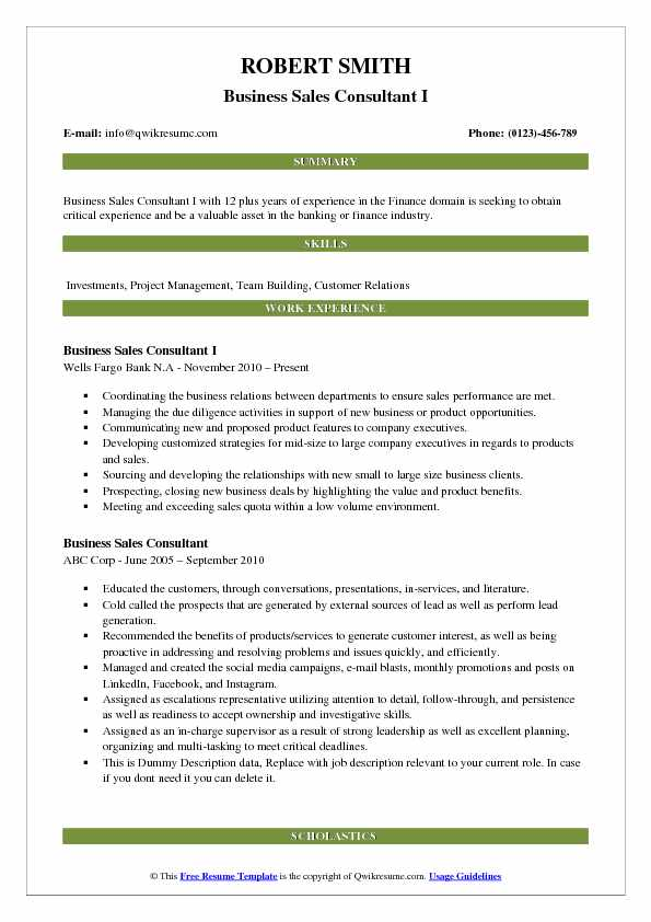 Business Sales Consultant I Resume Sample
