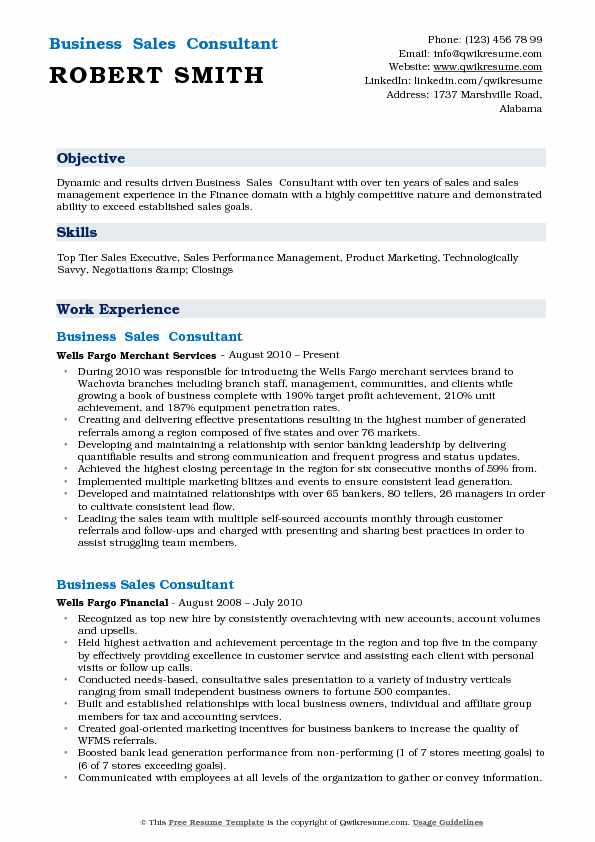 Business  Sales  Consultant  Resume Format
