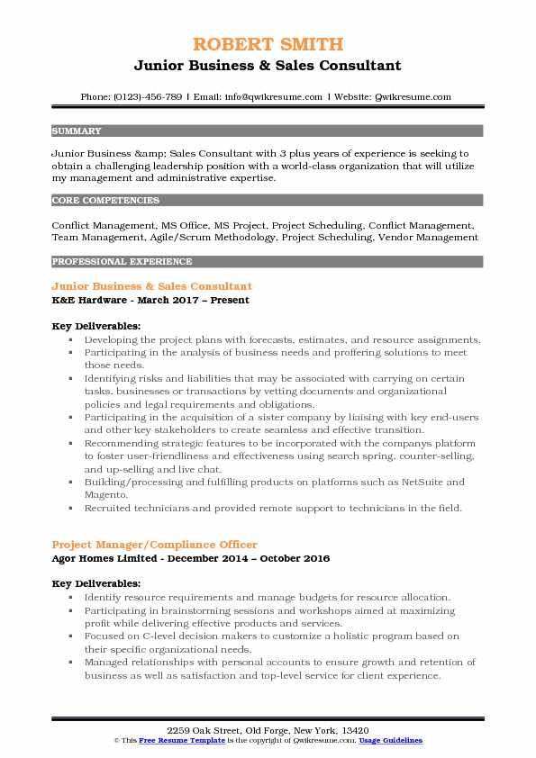junior business sales consultant resume format
