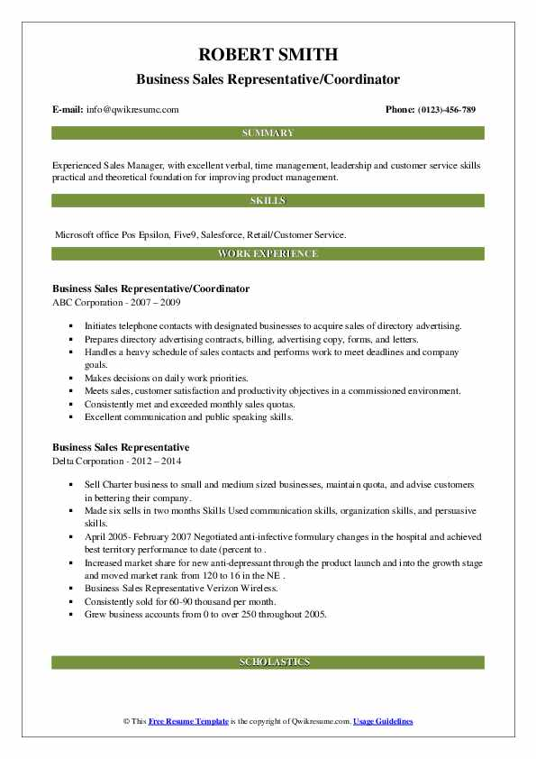 Business Sales Representative Resume example