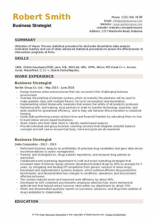 Business Strategist Resume example