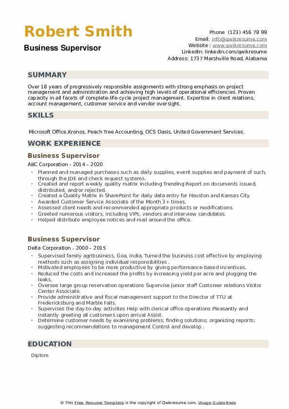 Business Supervisor Resume example